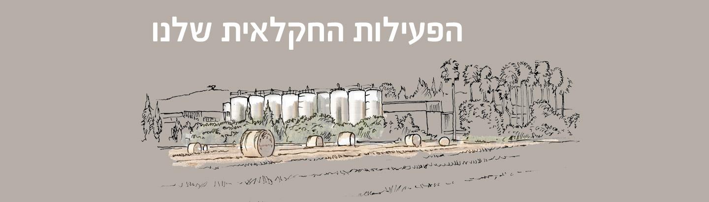 פעילות חקלאית