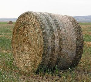 Bale Netwrap רשתות חציר