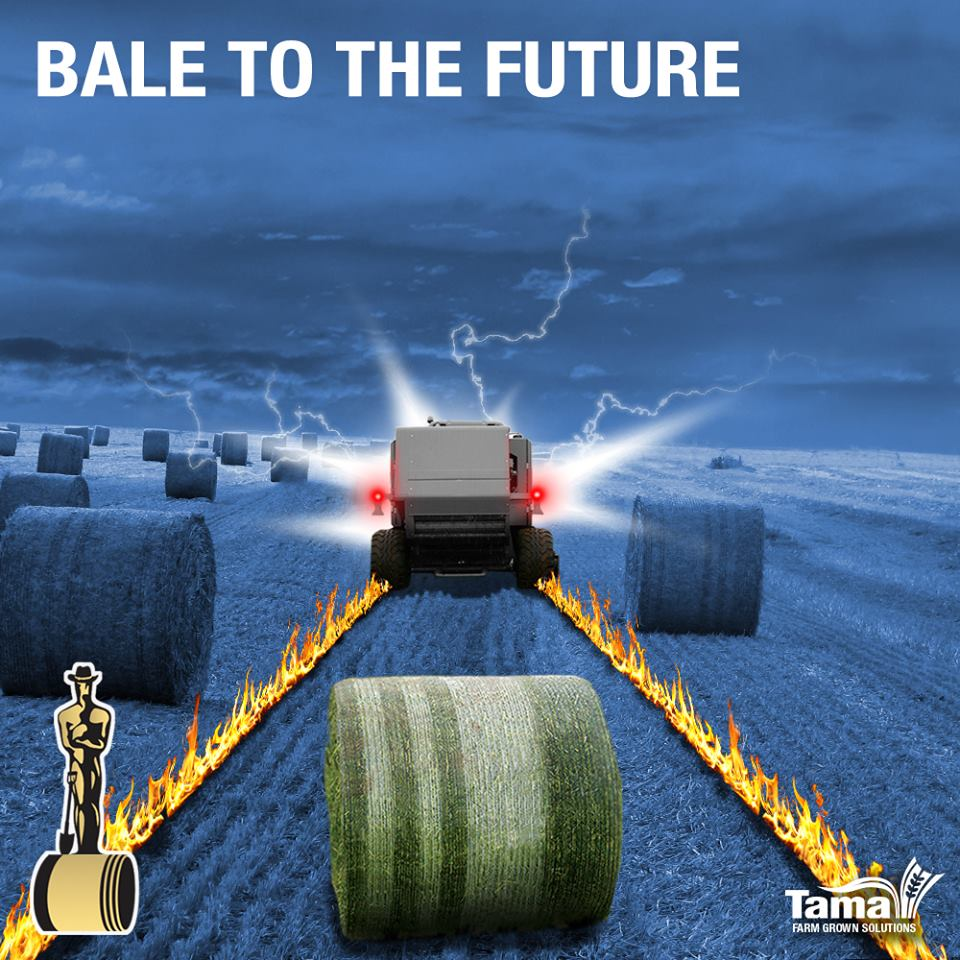 BALE TO THE FUTURE