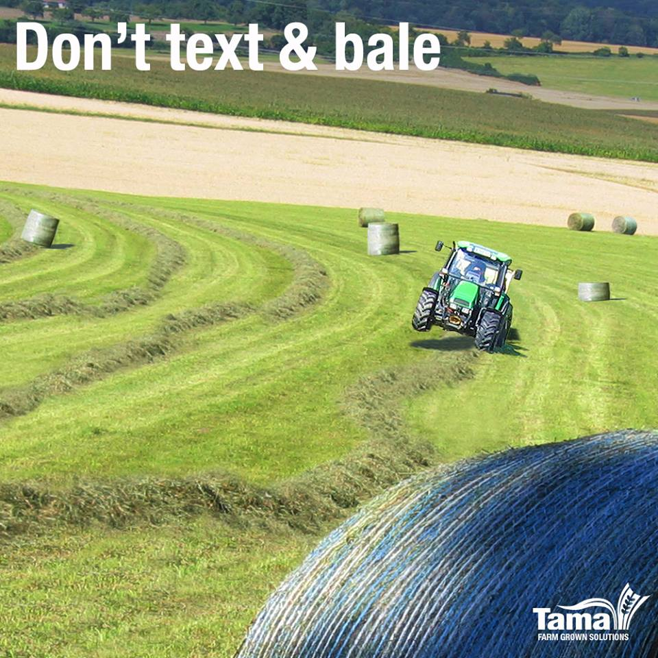 Don't text & bale