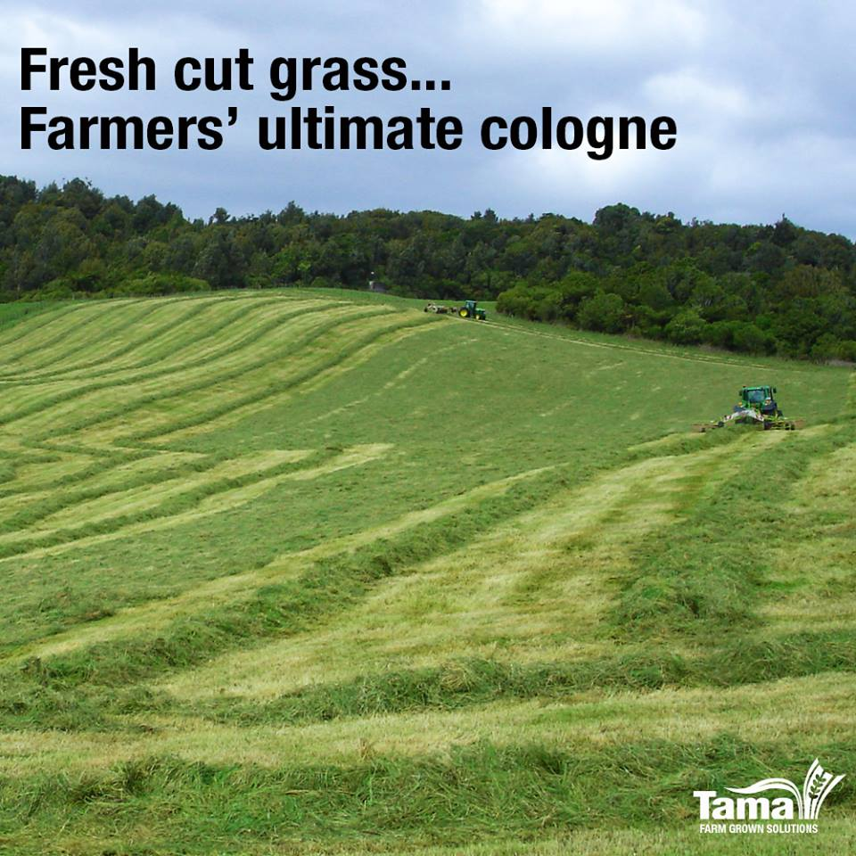 Fresh cut grass... farmers' ultimate cologne