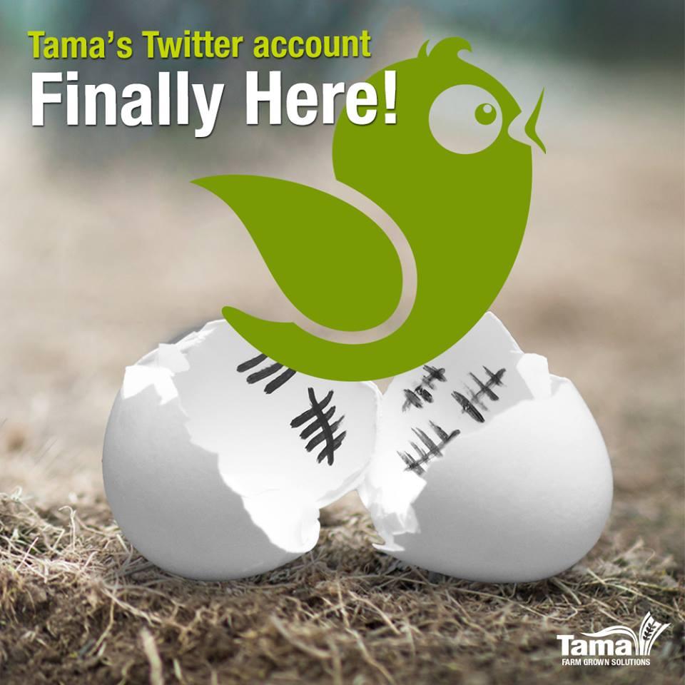 Tama's Twitter account