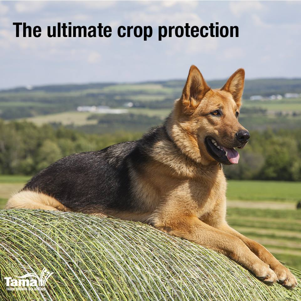 The ultimate crop protection