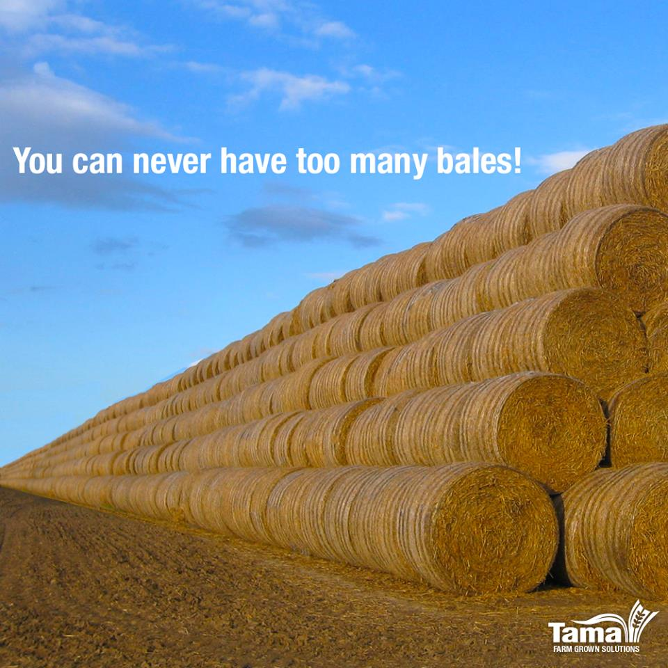 You can never heve too many bales