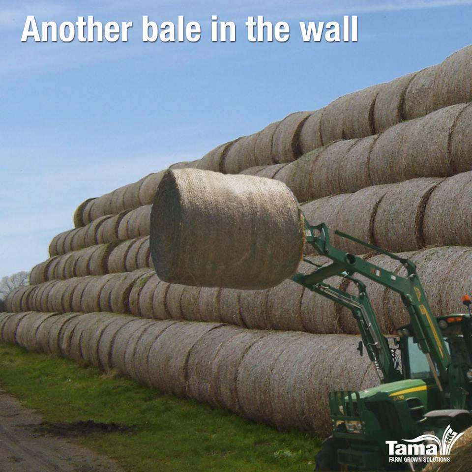 Another bale in the wall