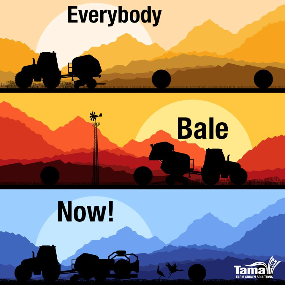 Everybody Bale Now!