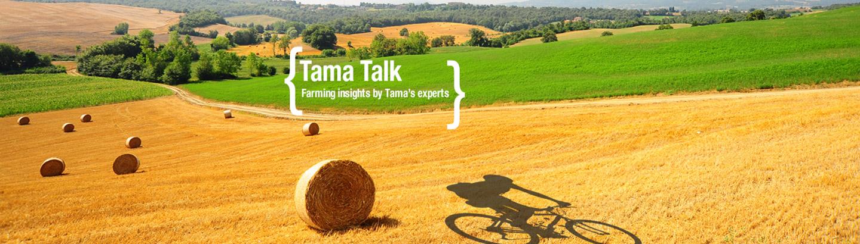 Ewald Werschmann -Tama Blog