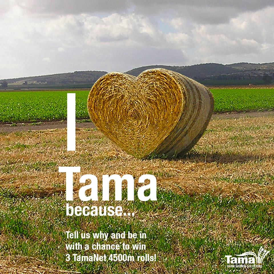 I Love Tama becaue...