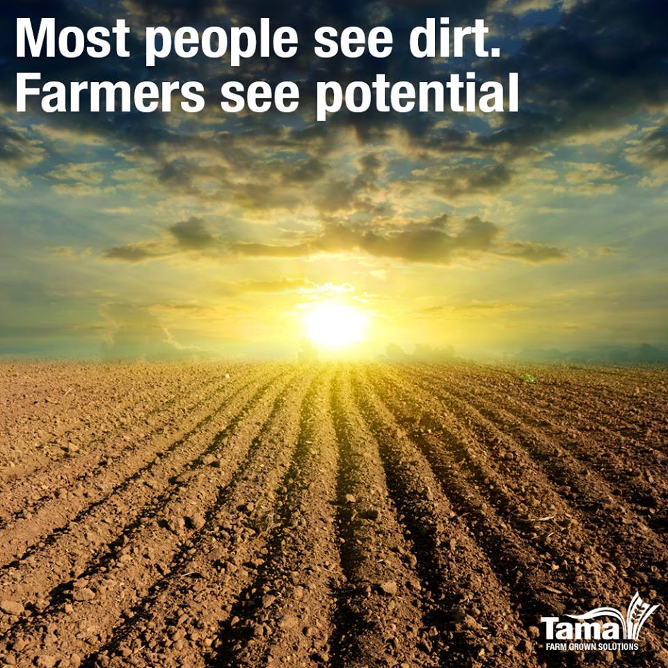 Most people see dirt. Farmers see potential