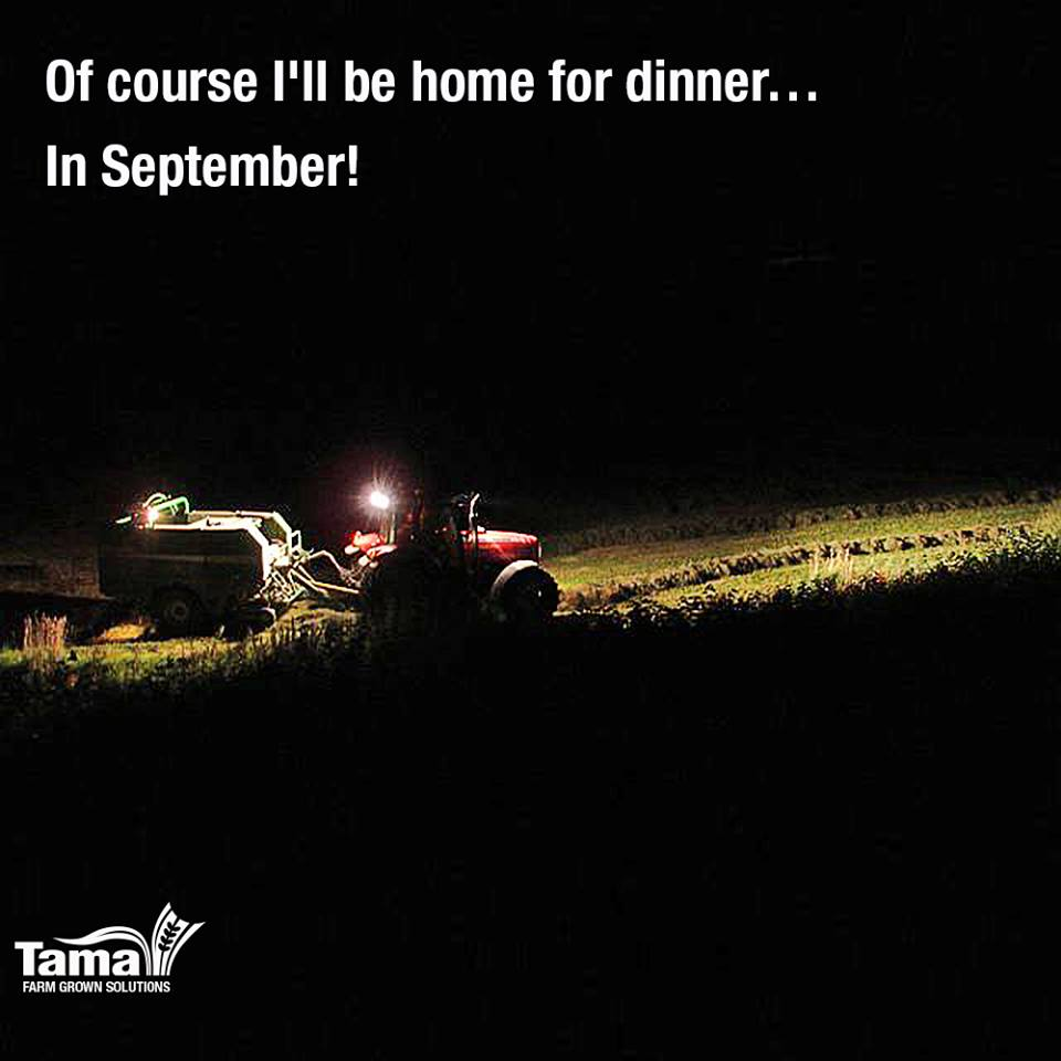 Of course I'll be home for dinner... In September!