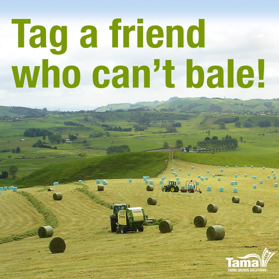 Tag a friend who can't bale!