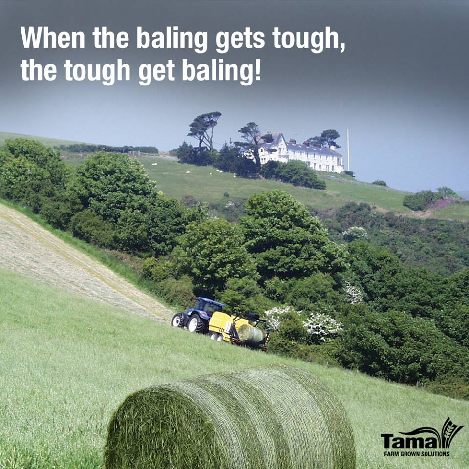 When the baling gets tough, the tough get baling!