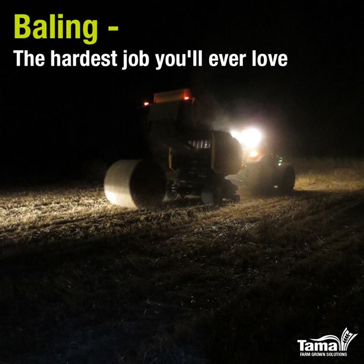 Baling - The hardest job you'll ever love