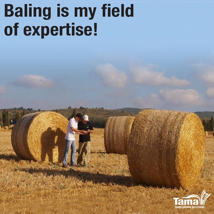 Baling is my field of expertise!
