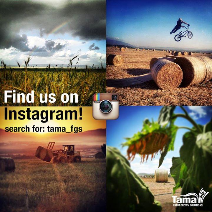 Find us on Instegram!