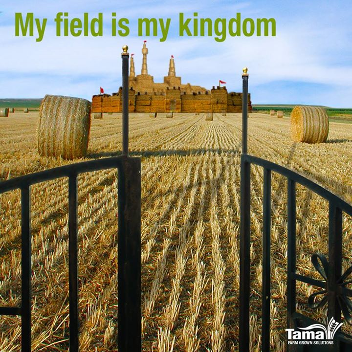 My field is my kingdom