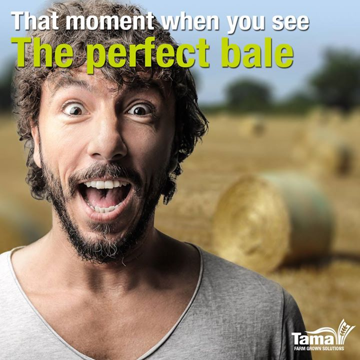 That moment when you see-The perfect bale