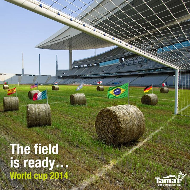 The field is ready... World cup 2014