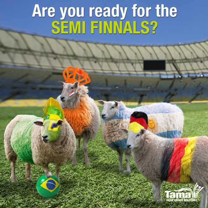 Are you ready for the SEMI FINNELS?