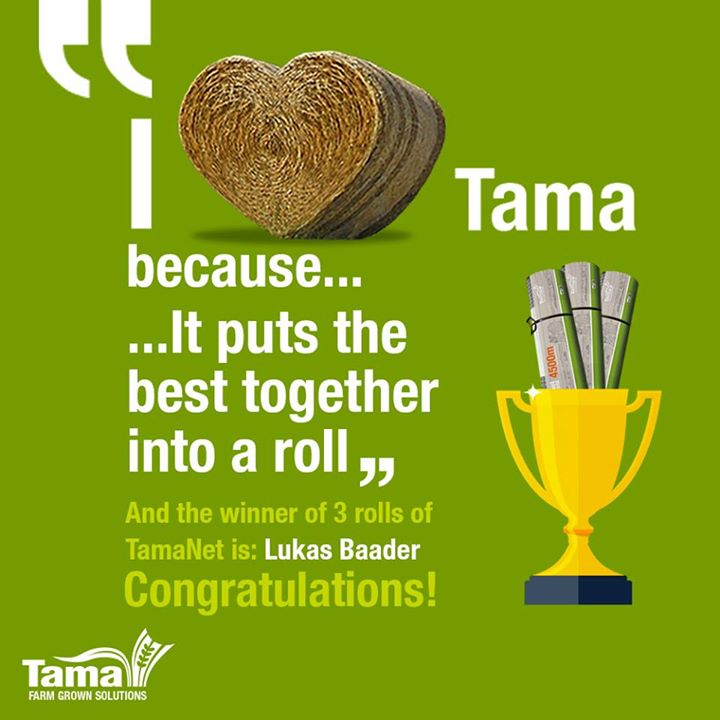 I Love Tama because...