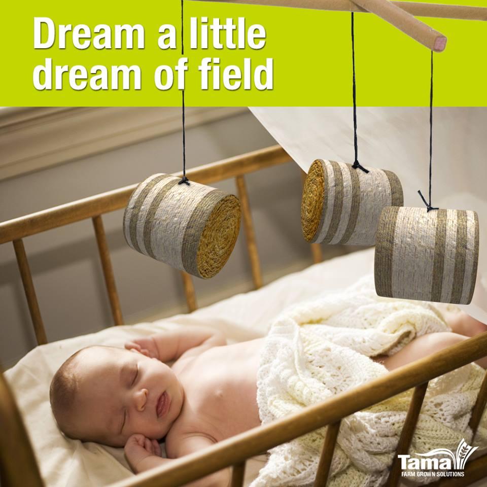 Dream a little dream of field