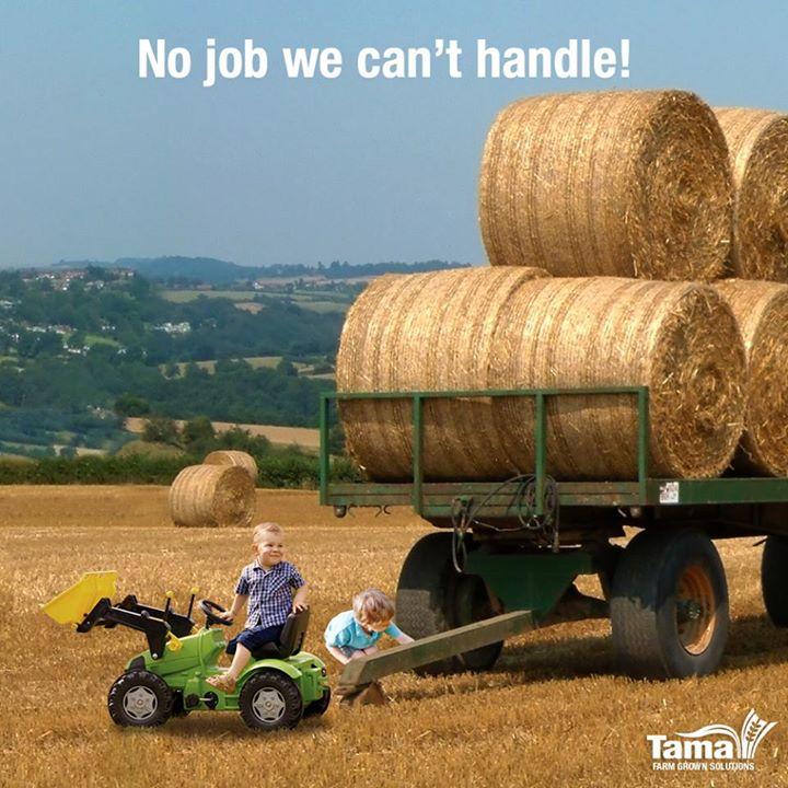 No job we can't handle!