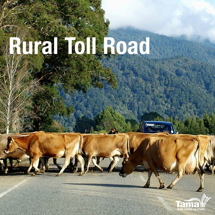 Rural Toll Road