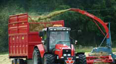clamp silage