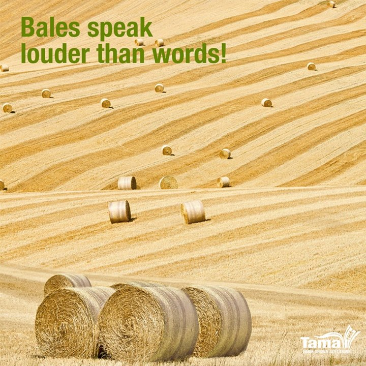 Bales speak louder than words!