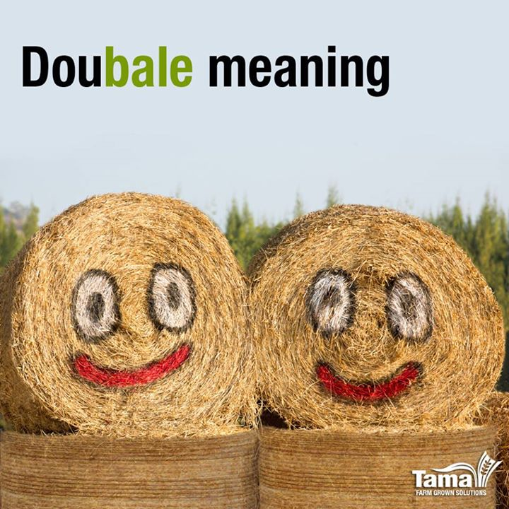Doubale meaning