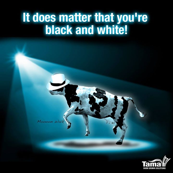 It does matter that you're black and white!