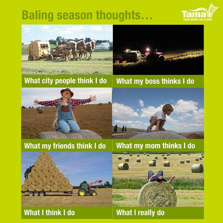Baling season thoughts...