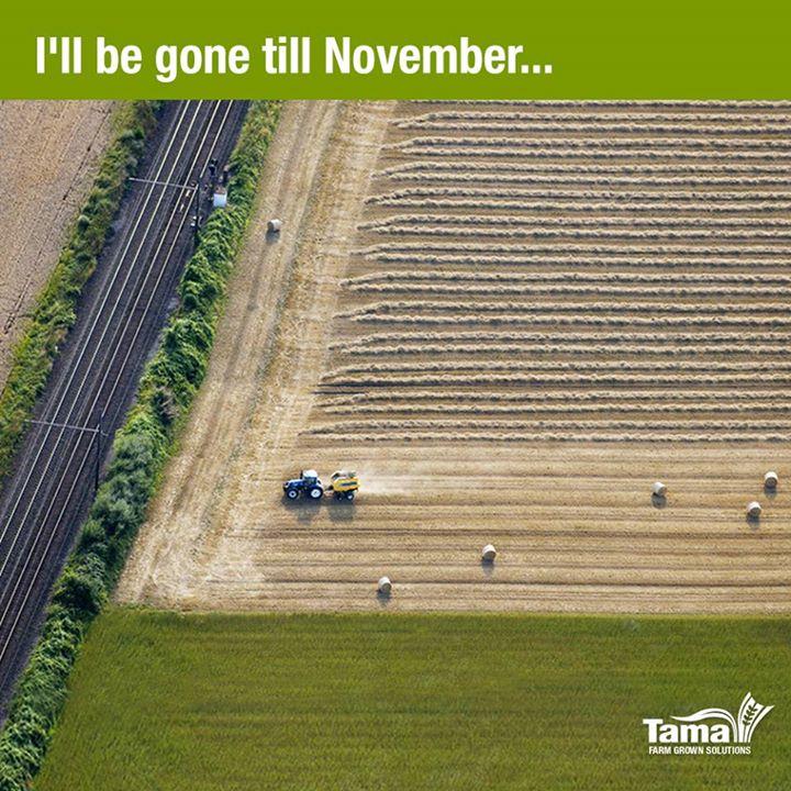 I'll be gone till November...