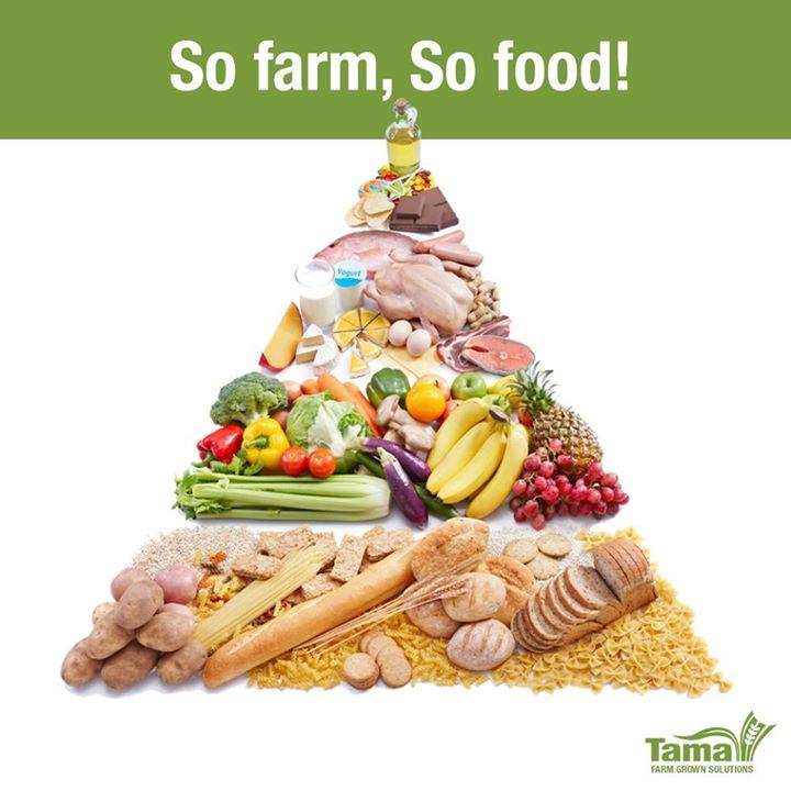 So farm, So food!