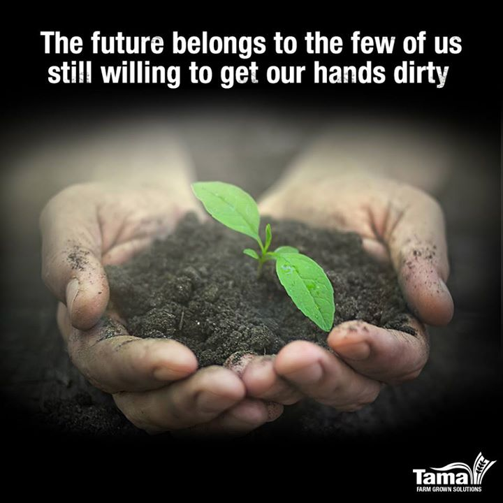 The future belongs to the few of us still willing to get our hands dirty