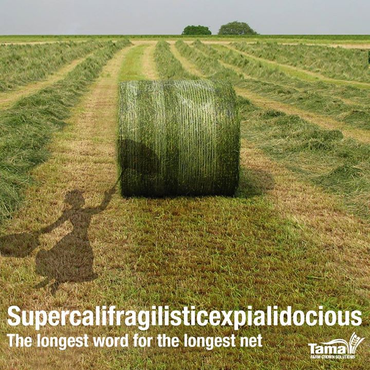 Supercalifragilisticexpialidocious! The longest word for the longest net...