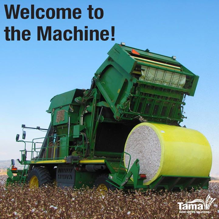 Welcome to the Machine!