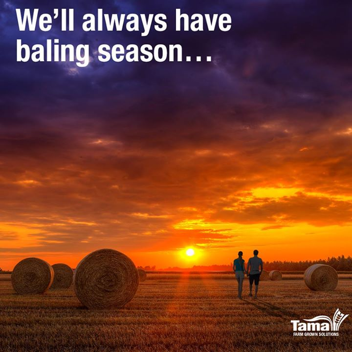We'll always have baling season...