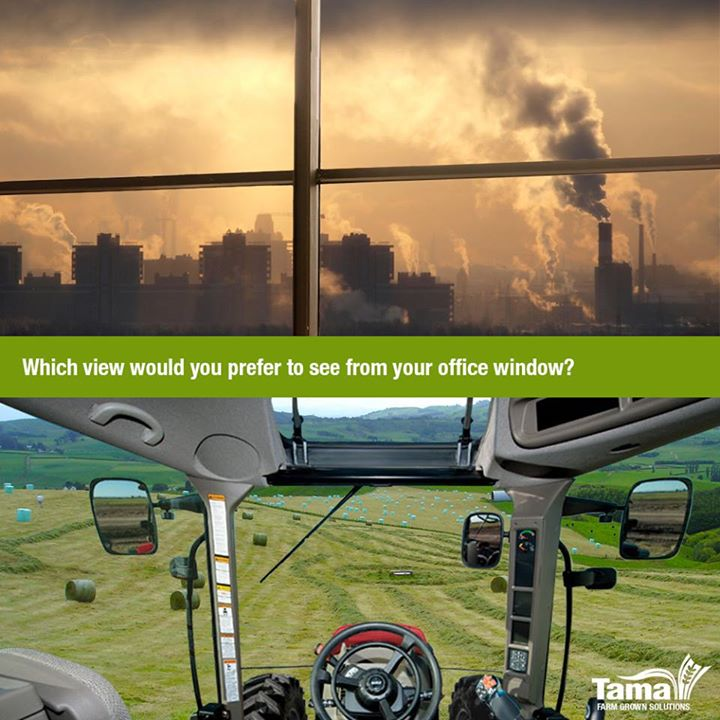 Which view would you prefer to see from your office window