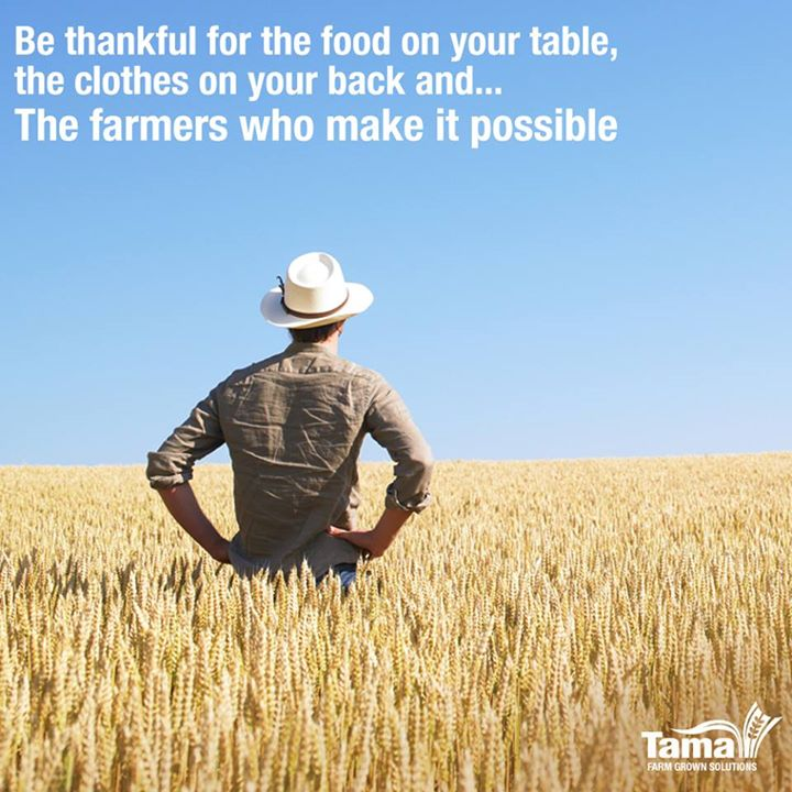 Be Thankful for the food on your table