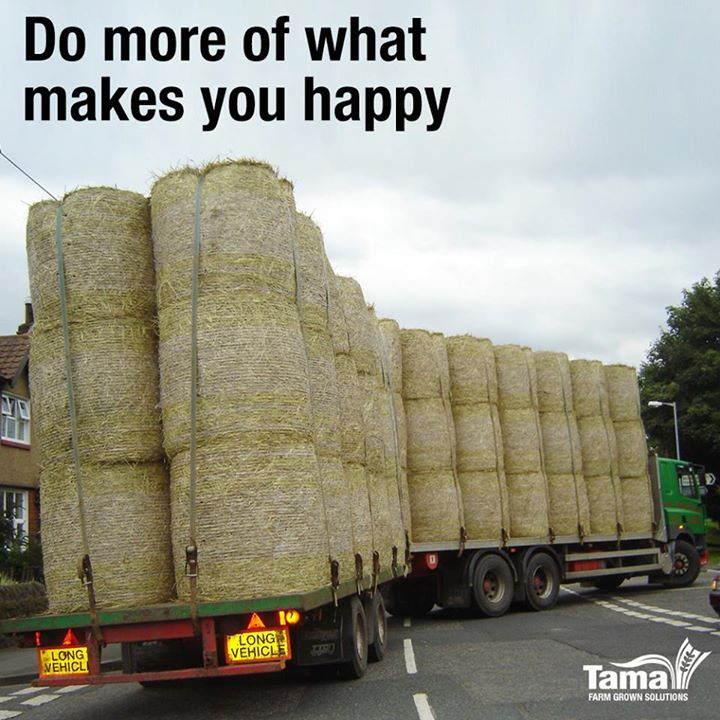 Do more of what makes yo happy