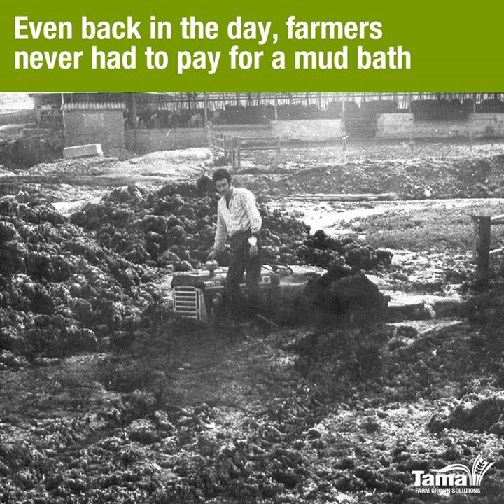 Even back in the day, farmers never had to pay for a mud bath