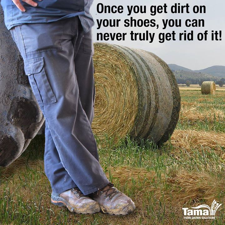 Once you get dirt on your shoes, you can never truly get rid of it!