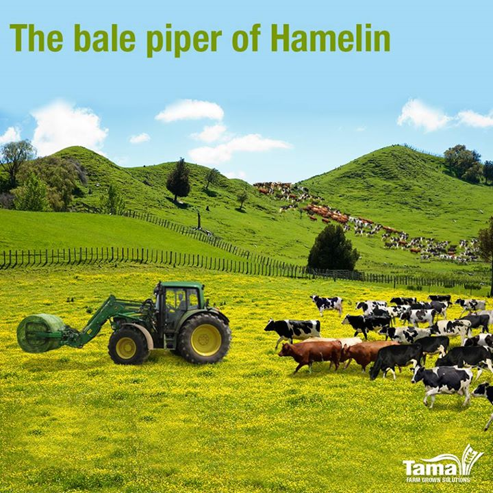 The bale piper of Hamelin