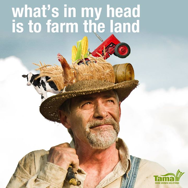 What's in my head is to farm the land