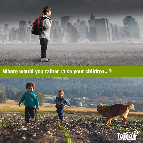 Where would you rather raise your children