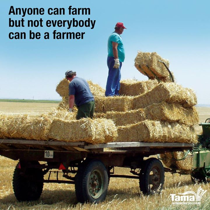 Anyone can farm but not everybody can be farmer