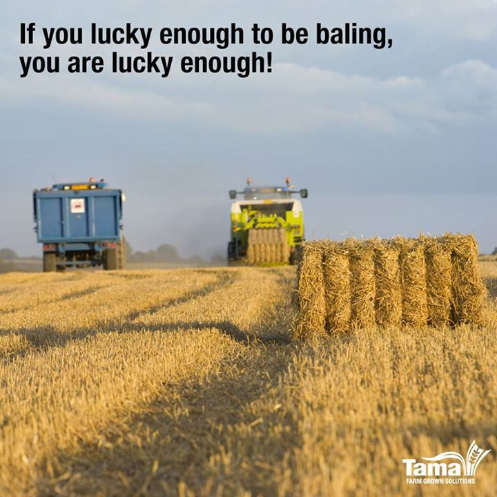 lucky enough to be baling