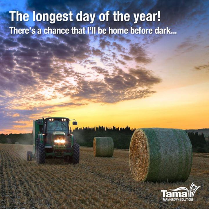 The longest day of the year! « Tama