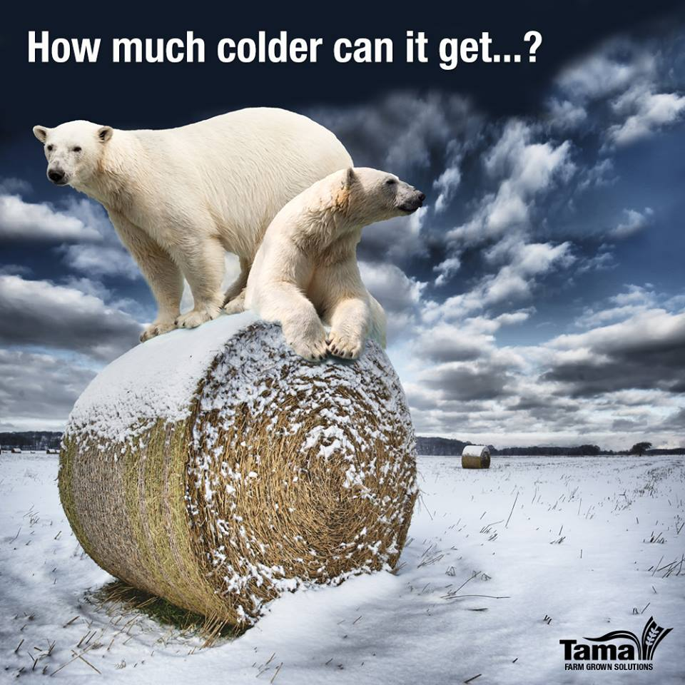 How much colder can it get... ?